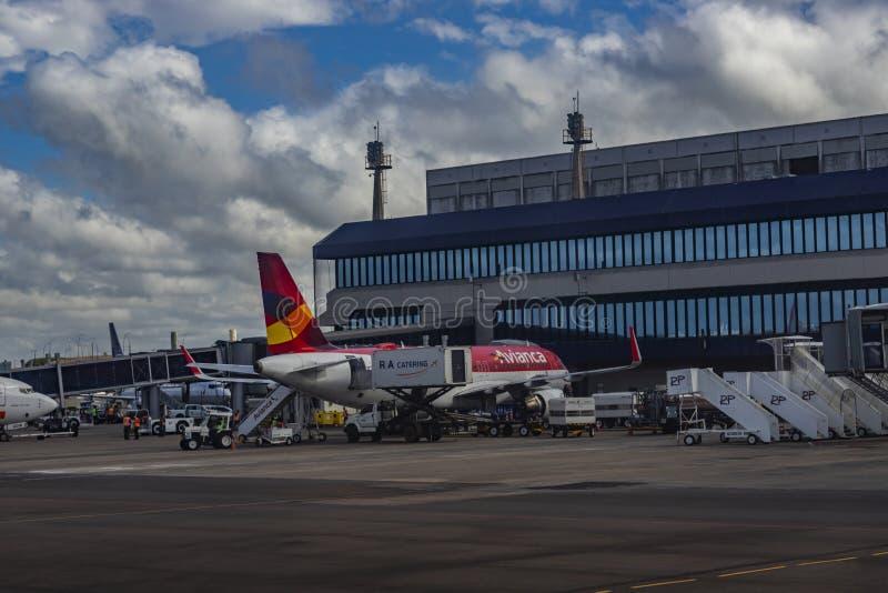 哥伦比亚航空航空公司 哥伦比亚航空飞机在萨尔加多菲诺国际机场 库存图片
