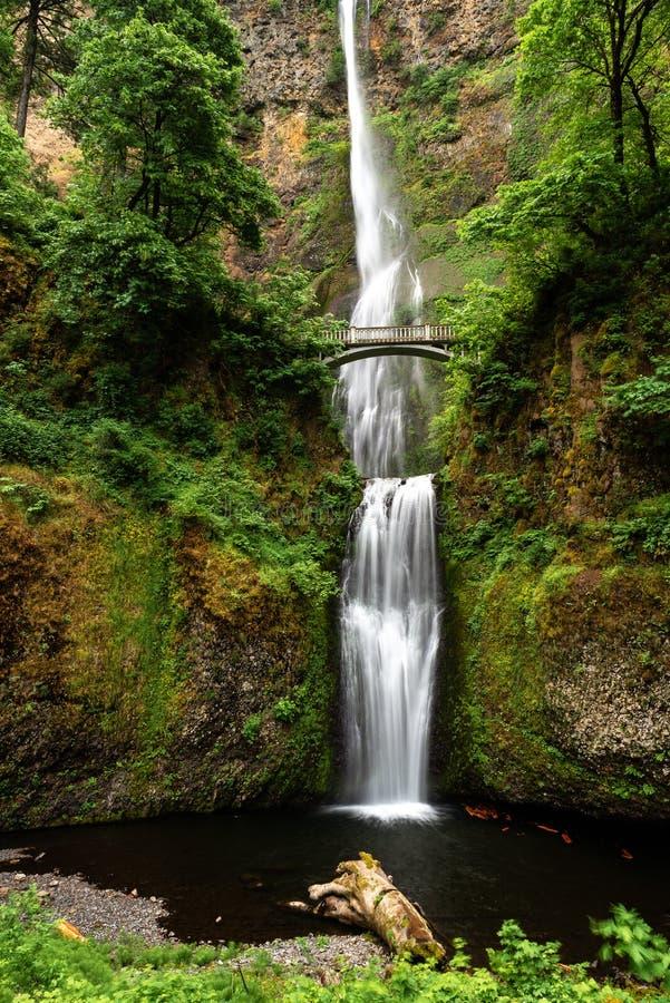 哥伦比亚落峡谷multnomah俄勒冈河 免版税库存照片