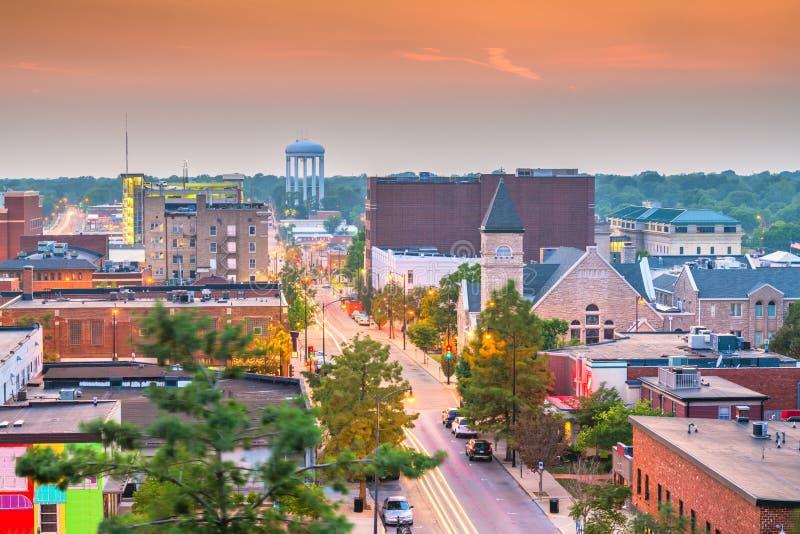 哥伦比亚,密苏里,美国街市市地平线 免版税图库摄影