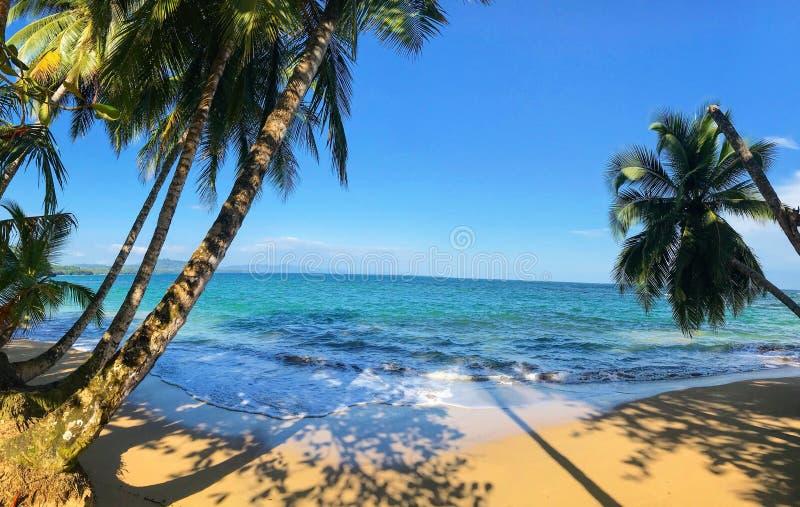 哥斯达黎加投入维达puerto viejo瑜伽温泉天 免版税库存照片