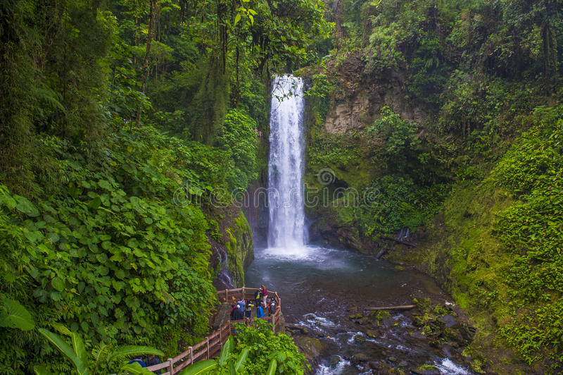 哥斯达黎加的拉巴斯瀑布 库存照片