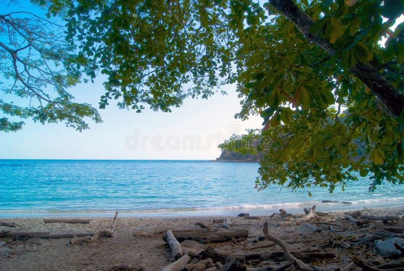 哥斯达黎加-热带海滩 图库摄影