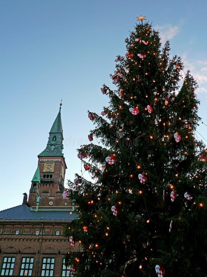 哥本哈根城镇厅和圣诞树 库存照片