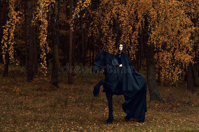 哥特式衣裳的少妇参与在黑白花的公马的驯马 免版税库存图片