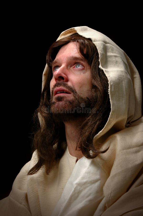 哭泣的耶稣 库存图片