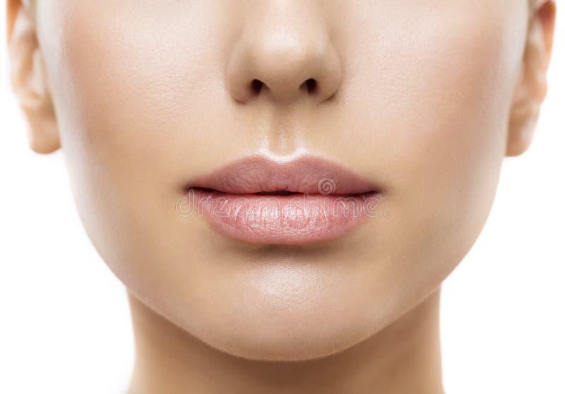 嘴唇,妇女面孔嘴秀丽,美丽的皮肤充分的嘴唇特写镜头 免版税库存照片