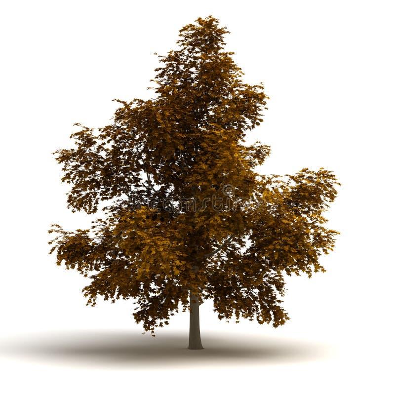 唯一树 向量例证