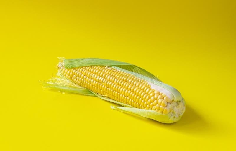 唯一玉米穗在黄色背景的 库存图片