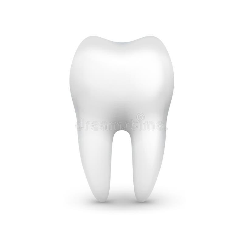 唯一白色牙 向量例证
