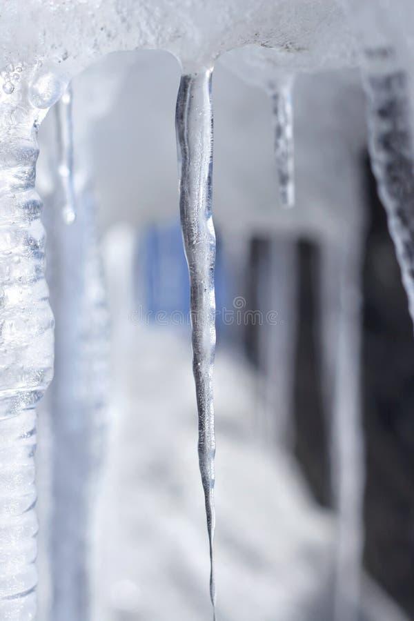 唯一的冰柱 免版税库存图片