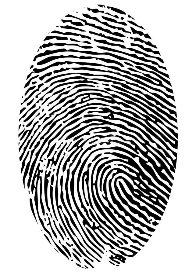 唯一的指纹 免版税库存照片