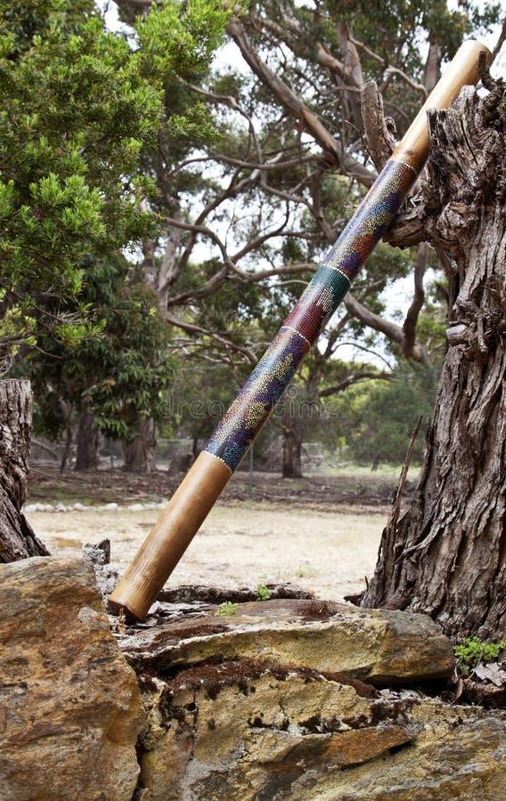唯一的didgeridoo 免版税库存照片
