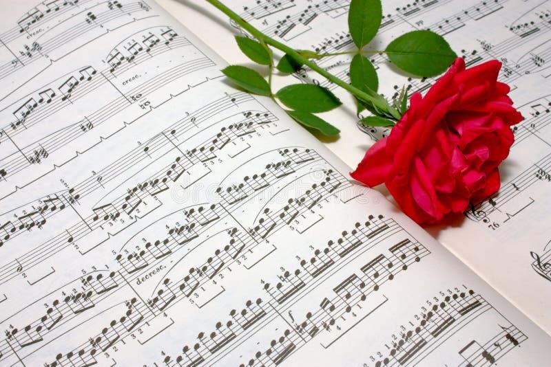 Download 唯一红色的玫瑰 库存照片. 图片 包括有 艺术, 上升了, 词根, 评分, 花卉, 概念性, 言情, 抽象 - 15684902