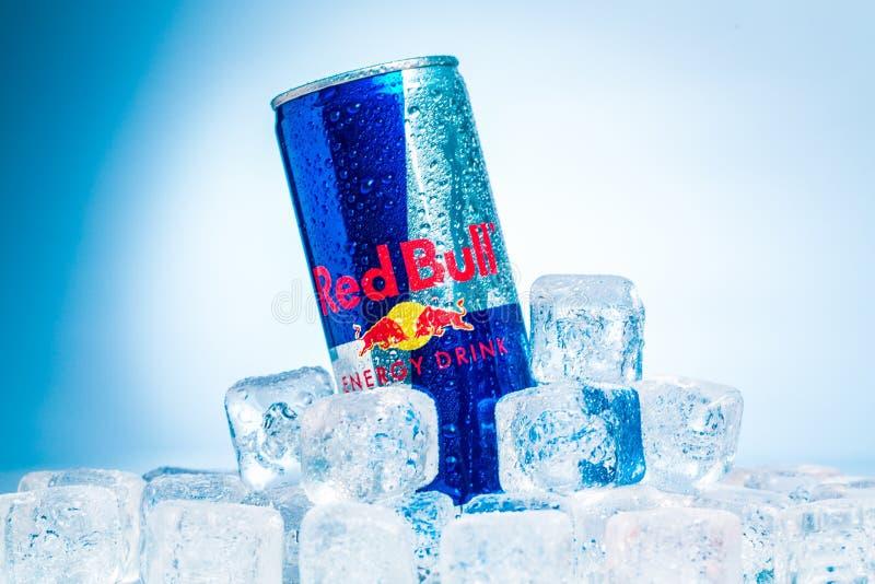 唯一罐头在冰的红色公牛能量饮料 库存照片