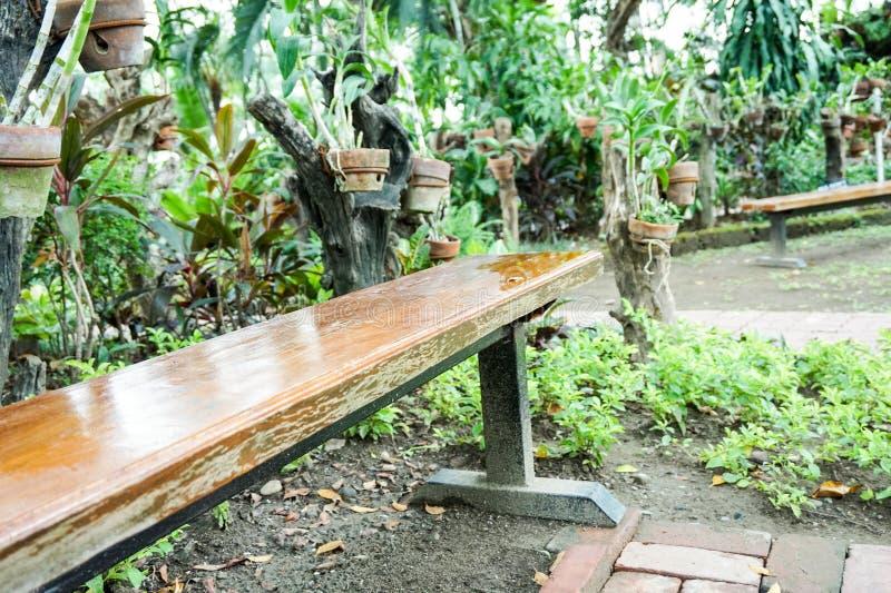 唯一长凳在公园 库存照片