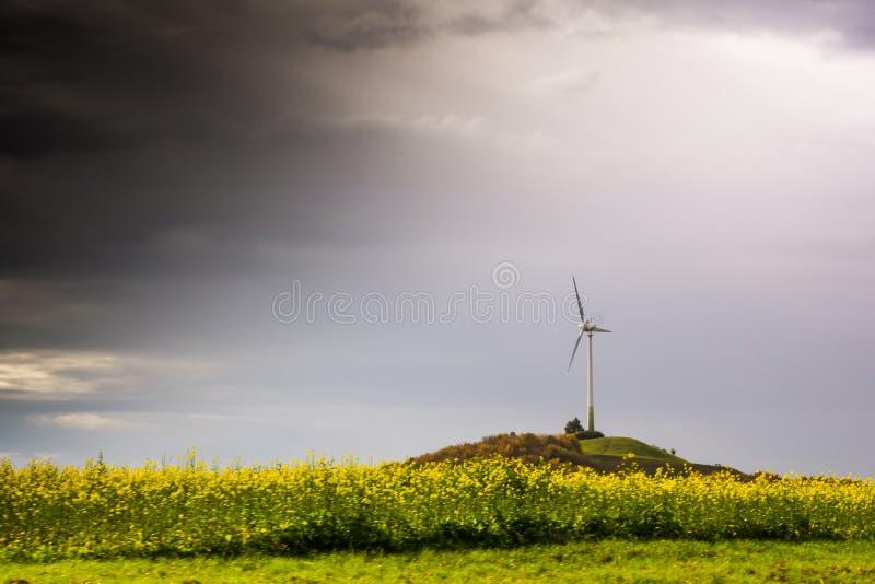 唯一风车涡轮小山开花黄色驾驶的高速公路Moti 免版税库存图片
