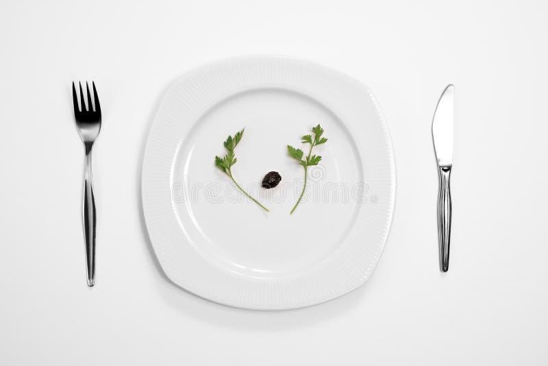 唯一黑橄榄和荷兰芹 库存图片