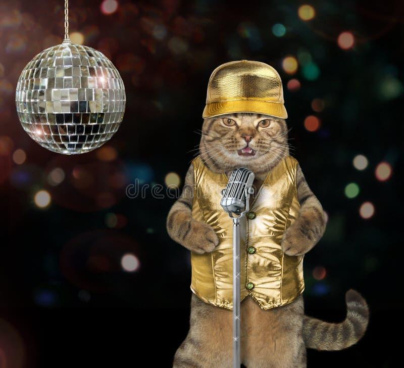 唱歌曲的猫在阶段 免版税库存照片