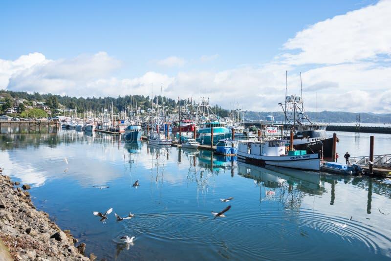 商业捕鱼业舰队被停泊在纽波特俄勒冈港  免版税库存图片