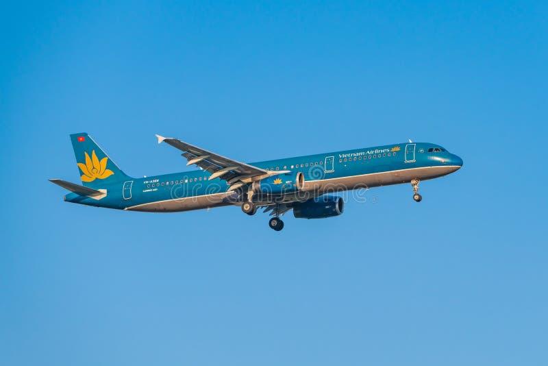 商业飞机为登陆是下降的, 库存图片