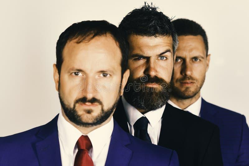 商人佩带聪明的衣服和领带 有胡子和可疑面孔的人代表公司领导 免版税库存图片