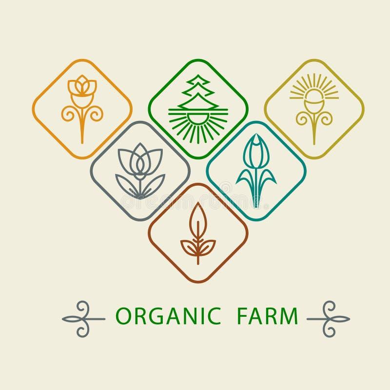 商标设计模板农业和有机农场 抽象线象元素和徽章食品工业的 概述组合图案na 向量例证