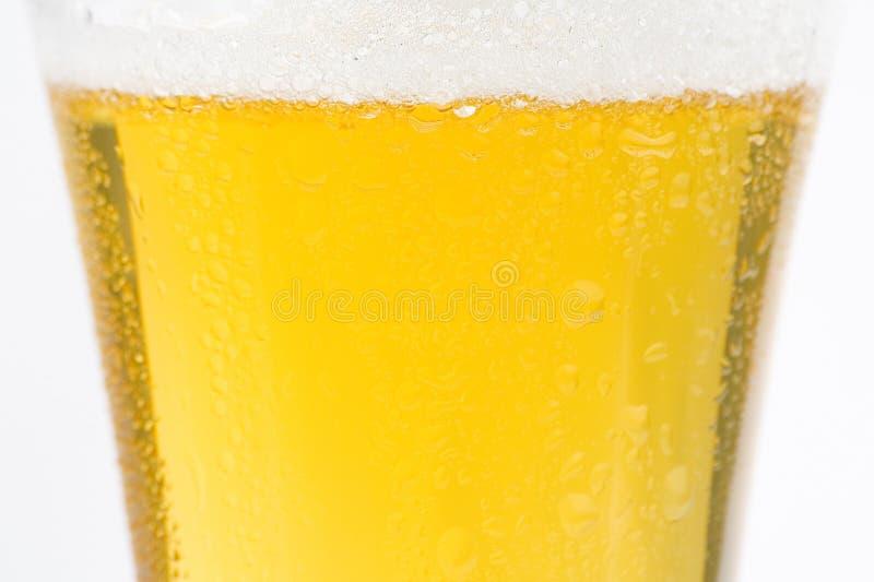 啤酒冷新鲜鲜美 库存照片