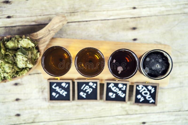 啤酒品尝 图库摄影