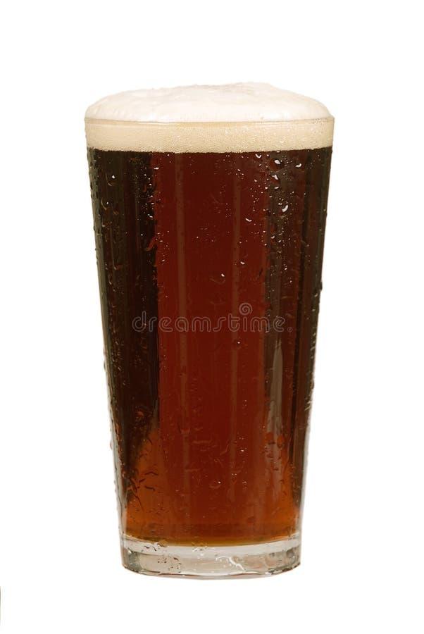 啤酒品脱 免版税图库摄影