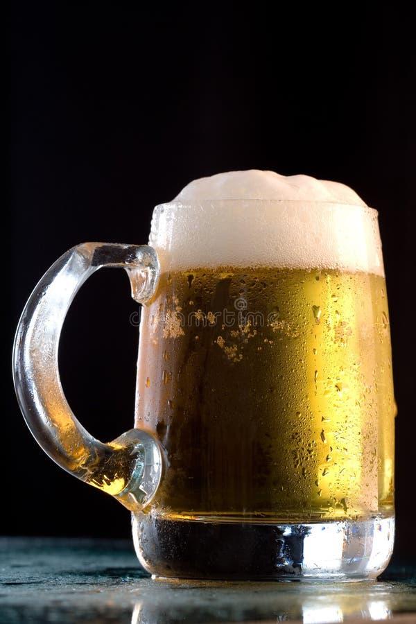 啤酒寒冷 库存照片