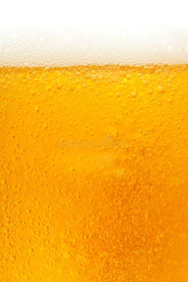 啤酒新金黄纹理 免版税库存照片
