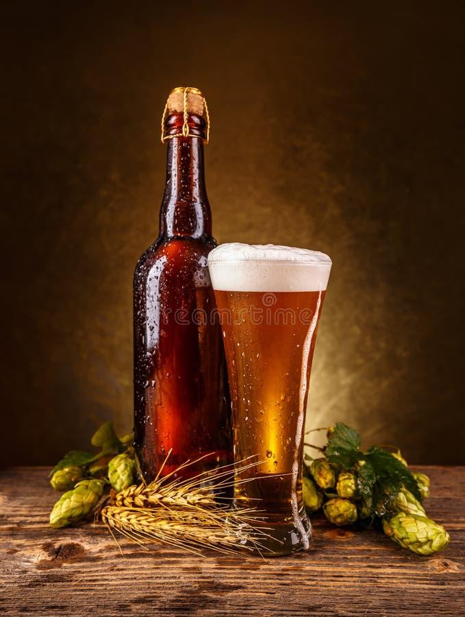 啤酒泡沫似新鲜 免版税库存图片