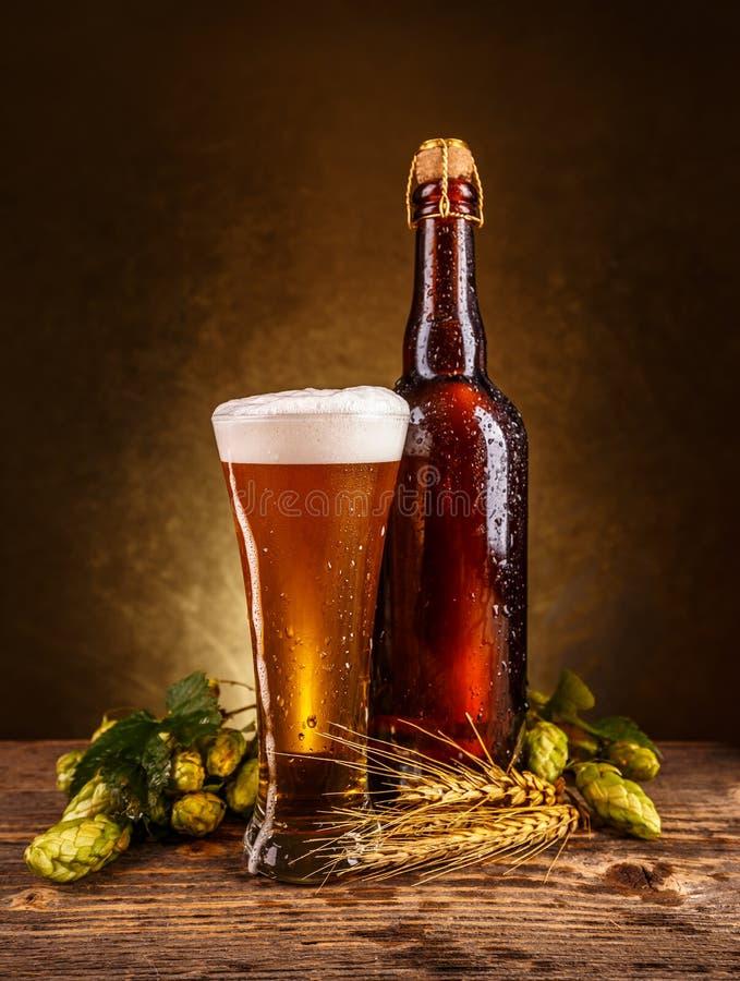 啤酒泡沫似新鲜 免版税库存照片