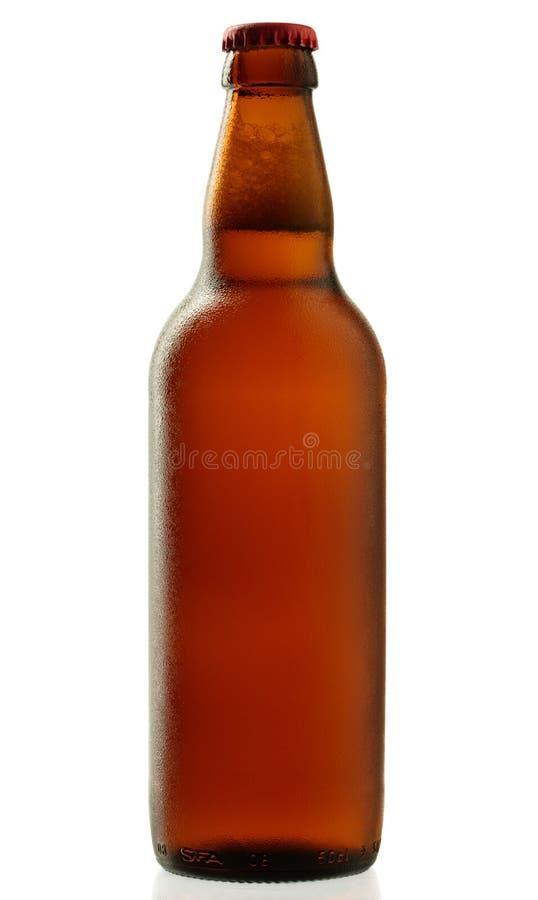 啤酒瓶丢弃水 免版税库存照片