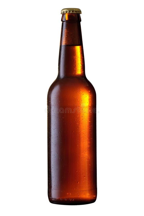 啤酒瓶 库存照片