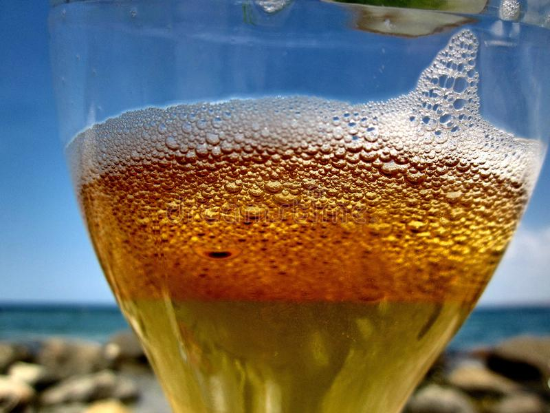 啤酒电灯泡在阳光下 库存图片