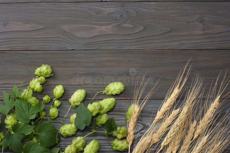 啤酒酿造成份跳跃和在黑暗的木桌上的麦子耳朵 啤酒啤酒厂概念 背景啤酒包含梯度滤网 与拷贝空间的顶视图 图库摄影