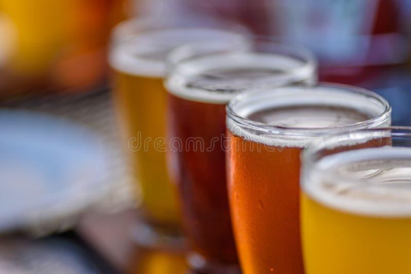 啤酒飞行的特写镜头宏指令在阳光下 库存照片