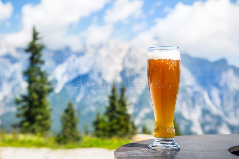 啤酒 在玻璃的冷的金黄桶装啤酒在阿尔卑斯 鲜美啤酒和旅游季节在山或阿尔卑斯 免版税库存照片