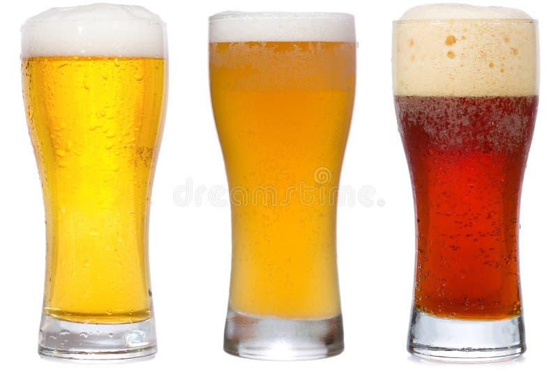 啤酒 免版税图库摄影