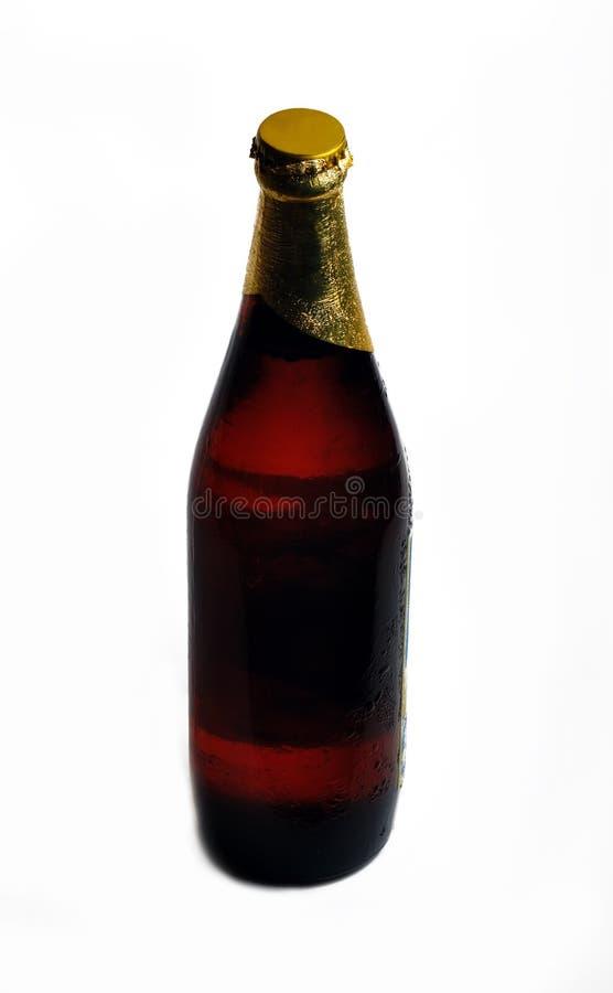 啤酒Bottle1 免版税库存照片