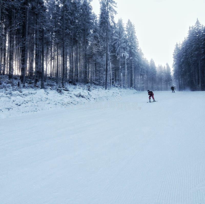 喀尔巴汗山坡的滑雪者 免版税图库摄影