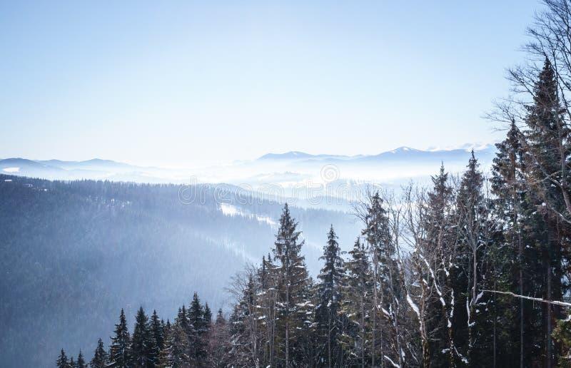 喀尔巴阡山脉的冬天多云风景在东欧 免版税库存照片