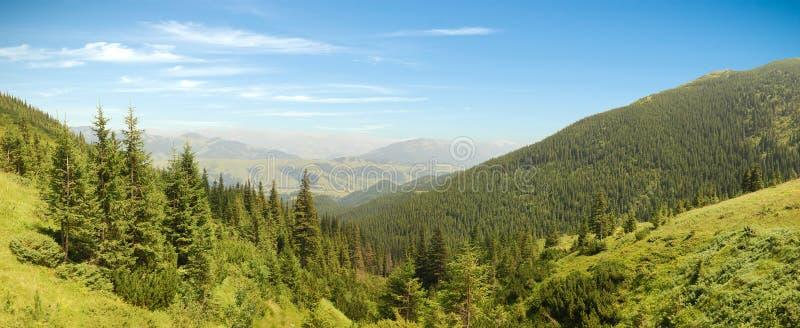 喀尔巴阡山脉的山全景 免版税库存照片