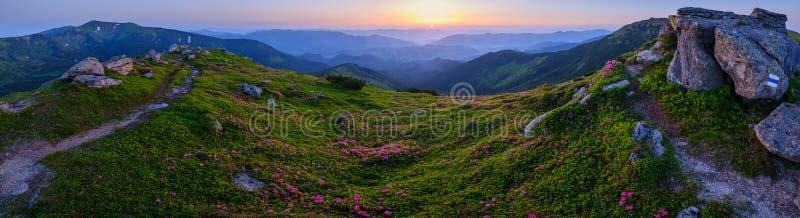 喀尔巴阡山脉的早晨夏天全景视图 免版税库存图片