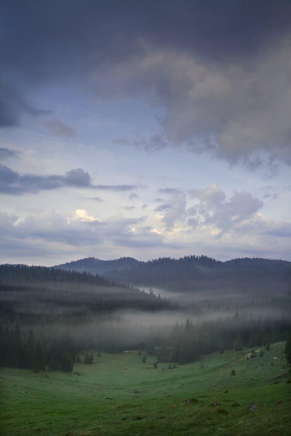 喀尔巴阡山脉的有薄雾的山谷 免版税库存图片