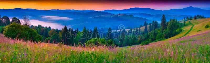 喀尔巴阡山脉的有雾的夏天全景 免版税库存图片