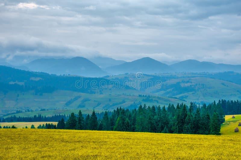 喀尔巴阡山脉风景清早在夏日 免版税库存照片