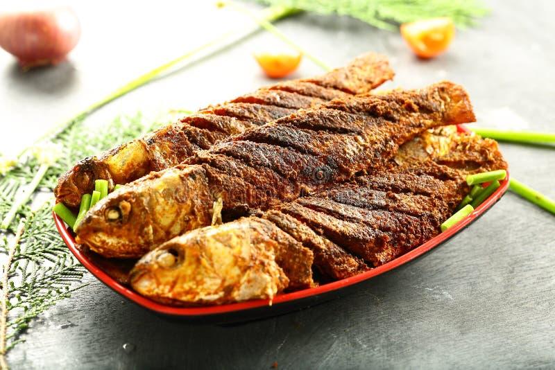 喀拉拉烹调,油煎的鱼用异乎寻常的香料 库存照片