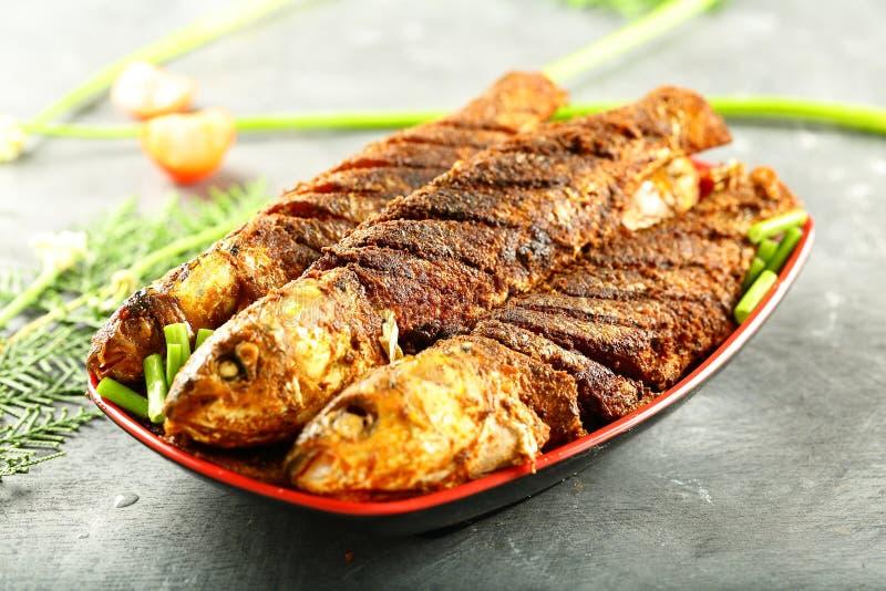 喀拉拉食物食谱油煎了鱼用异乎寻常的香料 免版税图库摄影